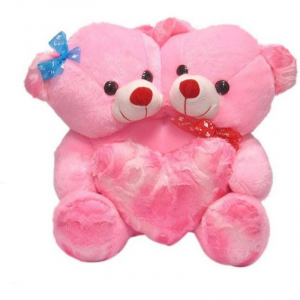 CoupleTeddy With Heart 30CM - Pink