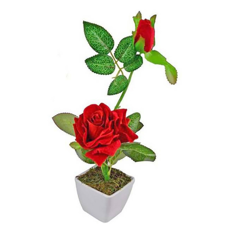 Single Flower with Vase (1 Piece)